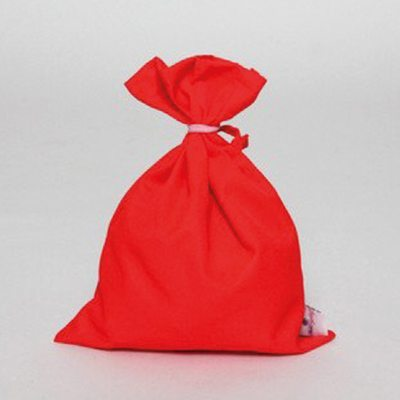red_bag_large_38bc1cfa-a8f4-4606-9380-c9b751152f32_1024x1024